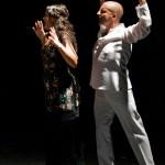 Flamenco-alba-guerrero (2)