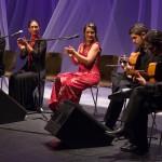 Festival flamenco Badén 2009